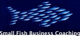 Small Fish large name logo 280x127